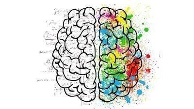 cerebro para memorizar oposiciones